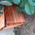 Le compostier du jardin